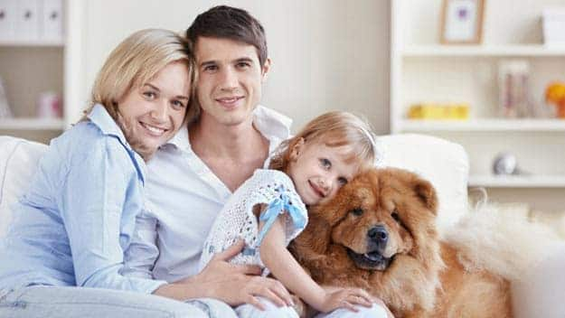 Wills & Trusts dog-young-family Direct Wills Whitby